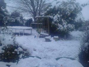 Snow snow snow ...